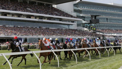 Cups, Cox Plate prizemoney kept at high levels, most purses restored