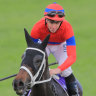 Melbourne Cup is 'mission critical' for Verry Elleegant