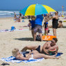 2019 was Brisbane's hottest year on average, Queensland's sixth-hottest