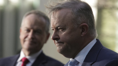 Albanese says his job is not at risk if Labor loses Eden-Monaro