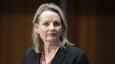 Environment Minister Sussan Ley is staring down a preselection challenge.