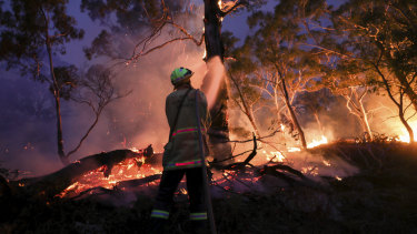 Online misinformation has become a feature of this unprecedented bushfire season.