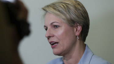 Shadow Minister for Education and Training Tanya Plibersek.