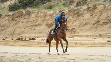 Shore thing: Champion jumps jockey Steven Pateman rides China Plate during a trackwork session at Thirteenth Beach, Barwon Heads, Victoria.