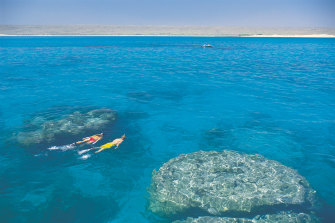 Ningaloo Marine Park off Western Australia. Scientists say much more of the world's oceans need to be protected if we are to preserve our biodiversity.