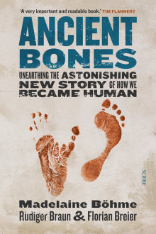 Ancient Bones: Unearthing the Astonishing New Story of How We Became Human, Madelaine Bohme, Scribe