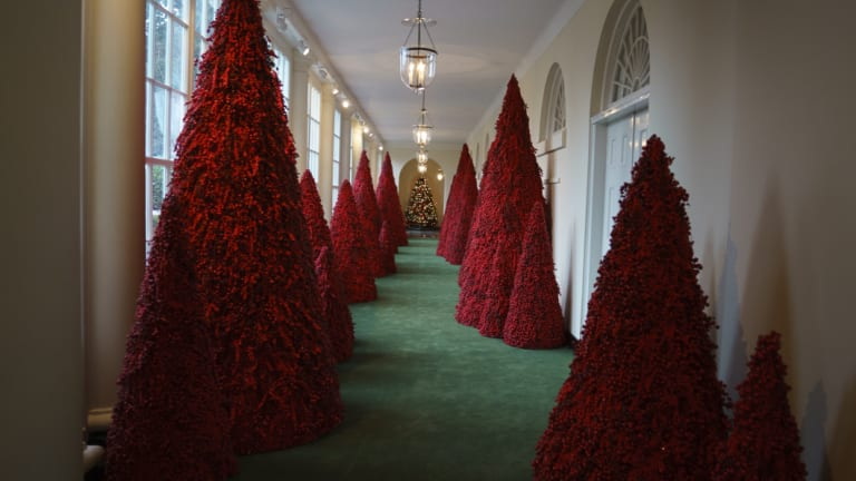 Melania Trump's understated topiary trees lining the East colonnade left some people confused.