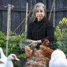 Lockdown gardeners see months of hard work bear fruit - and veg
