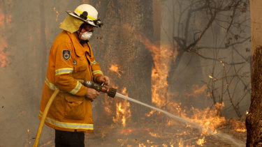 A Tuncurry fire crew member fights part of the Hillville bushfire south of Taree.