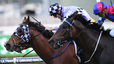Isorich will embark on his 114th career start at Randwick on Saturday.