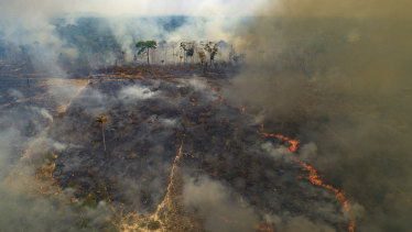 Fire consumes land recently deforested by cattle farmers near Novo Progresso, Para state, Brazil.
