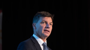 Energy Minister Angus Taylor addressing the COSBOA National Small Business Summit in Melbourne on Friday.