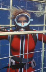 Valerie Taylor in a shark cage.