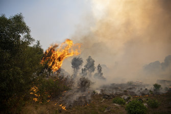 A fire rages out of control on the slopes of Table Mountain on Sunday.