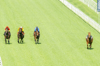 A riderless Nature Strip takes off around the Randwick circuit.