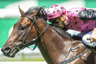 Mamaragan has won the Skyline Stakes and is out to add the the Sires' to his resume on Saturday