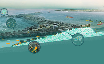 Risk reduction and habitat creation - living breakwater concept.