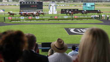 Today's the day: Tuesday Special looks ready to rumble at Kembla.
