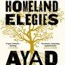 Fiction reviews: The brilliant Homeland Elegies and three more titles