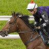 Post-gelding flop not the real Big Parade: Newnham