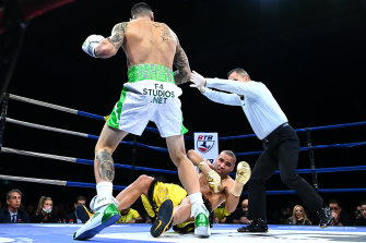 Sad end: Michael Zerafa knocks out Anthony Mundine in the first round earlier this month