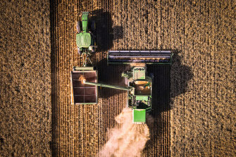 A farmer operates a machine known as a header, which harvests wheat and unloads it into an accompanying grain cart, called a chaser bin, during a harvest last year in northern NSW,