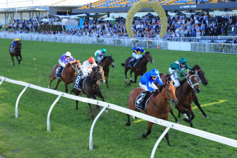 Bivouac takes the Golden Rose in fighting style from Yes Yes Yes.