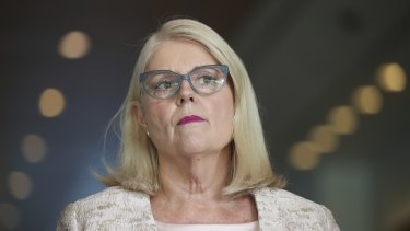 Home Affairs Minister Karen Andrews says the new laws are needed to deal with the escalating wave of cyber attacks on critical infrastructure.