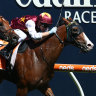 Bring on the All-Star Mile, says Nichols, after Avalon streets Futurity
