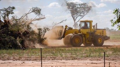 'Environmental vandalism': State's response to secret land audit blasted