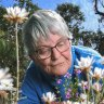 'Getting your orchid eye in': All abloom as Anglesea puts on a dazzling display