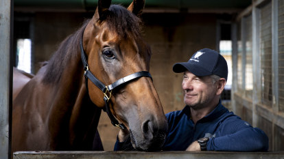 Fresh Mugatoo ready to be a star again in the Doomben Cup