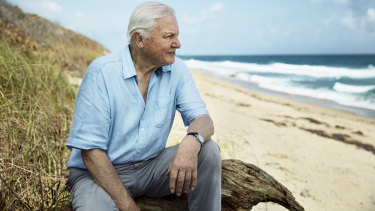 Sir David Attenborough in filming for Blue Planet II.