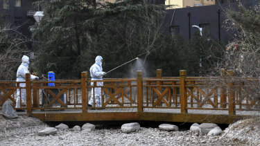 Workers in protective suits spray disinfectant near a residential area in Shijiazhuang.