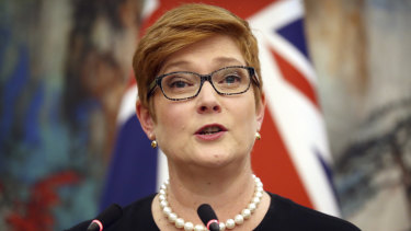 Marise Payne in her joint press conference this week with Chinese Foreign Minister Wang Yi.