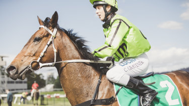 Injuries almost forced Appoint Percy's retirement, but he's now won back-to-back races for Canberra trainer Luke Pepper.