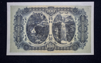 The waterfall images on the reverse of the banknote.