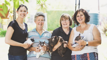 From left: ACT Wildlife carers  Caroline Hennessy, Marg Peachey, Joan McKay and Lindy Butcher.