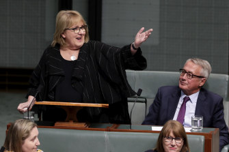 Labor MP Jenny Macklin delivers her valedictory speech in 2019.