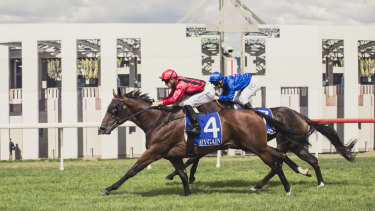 Winning horse Final Award and jockey Josh Parr win the Canberra Guineas race.