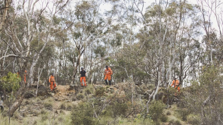 Volunteers search a large area on Mount Ainslie for evidence in relation to a historic missing persons case.