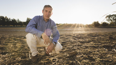 Drained Tuggeranong pond should be urgently restocked: fishers