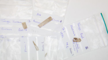 Some of the tiny implements found in Tanga by Australian National University archaeologists.