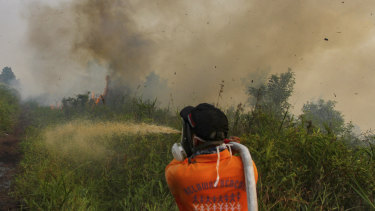 Firefighters work to extinguish brush fires in Kampar, Riau province, Indonesia, on Wednesday.