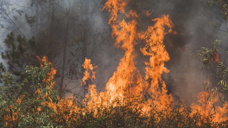 An out of control bushfire burnt at Pierces Creek in November 2018.