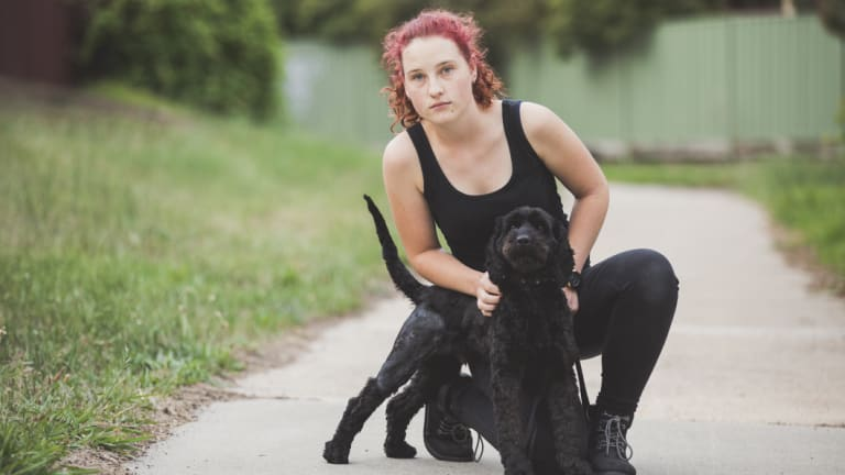Rachael Bartram with two-year-old spoodle Romeo on the path where the dog was attacked on Saturday.