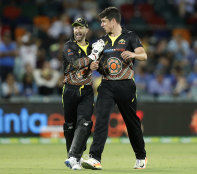 Stand-in Australia T20 captain Matthew Wade with Moises Henriques.