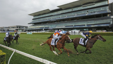 Masked Crusader (right) gets past a gallant Standout to win the Premiere Stakes.