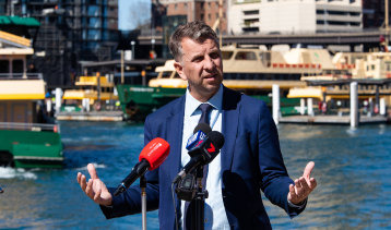 NSW Transport Minister Andrew Constance says he is considering building electric ferries locally.