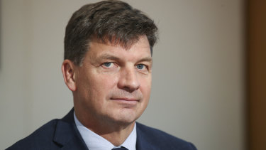 Angus Taylor is facing a challenge from grassroots groups.